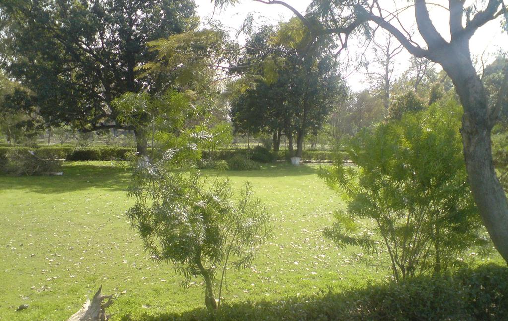 Municipal Park Renala Khurd