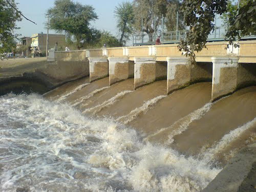 Thrikhni Jhaal Arifwala_Punjab_Pakistan