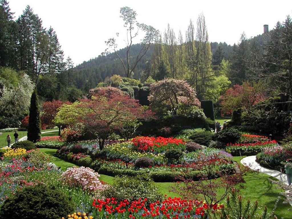 Mughal Gardens Wah.