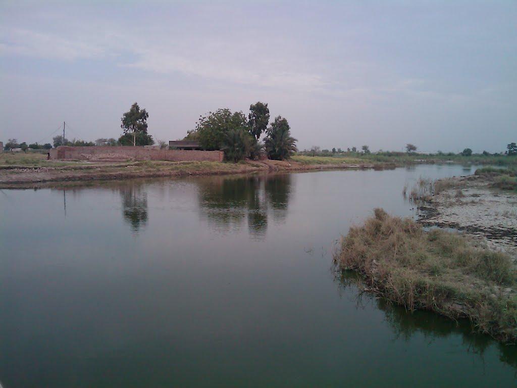 Beautiful Lake near Gujri, Distt. Sanghar